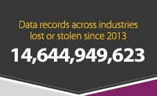 Data records across industries lost or stolen since 2013: 9,728,017,988